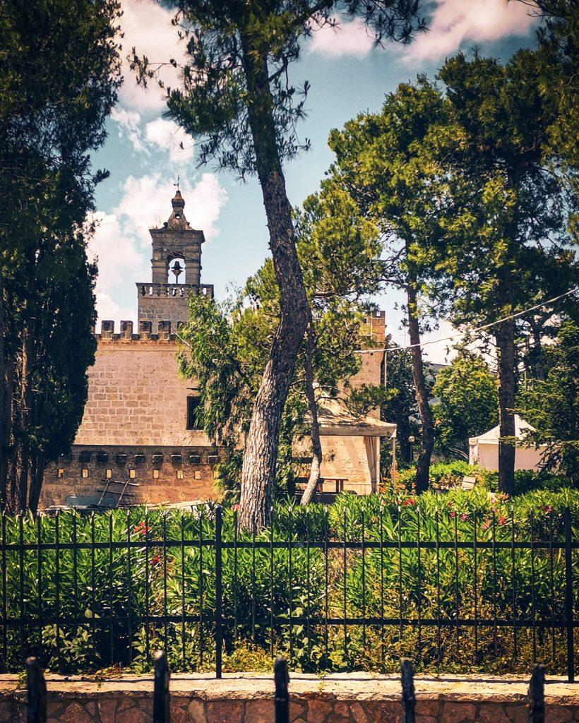 campanile fra gli alberi di pino di Santa Maria della Grotta