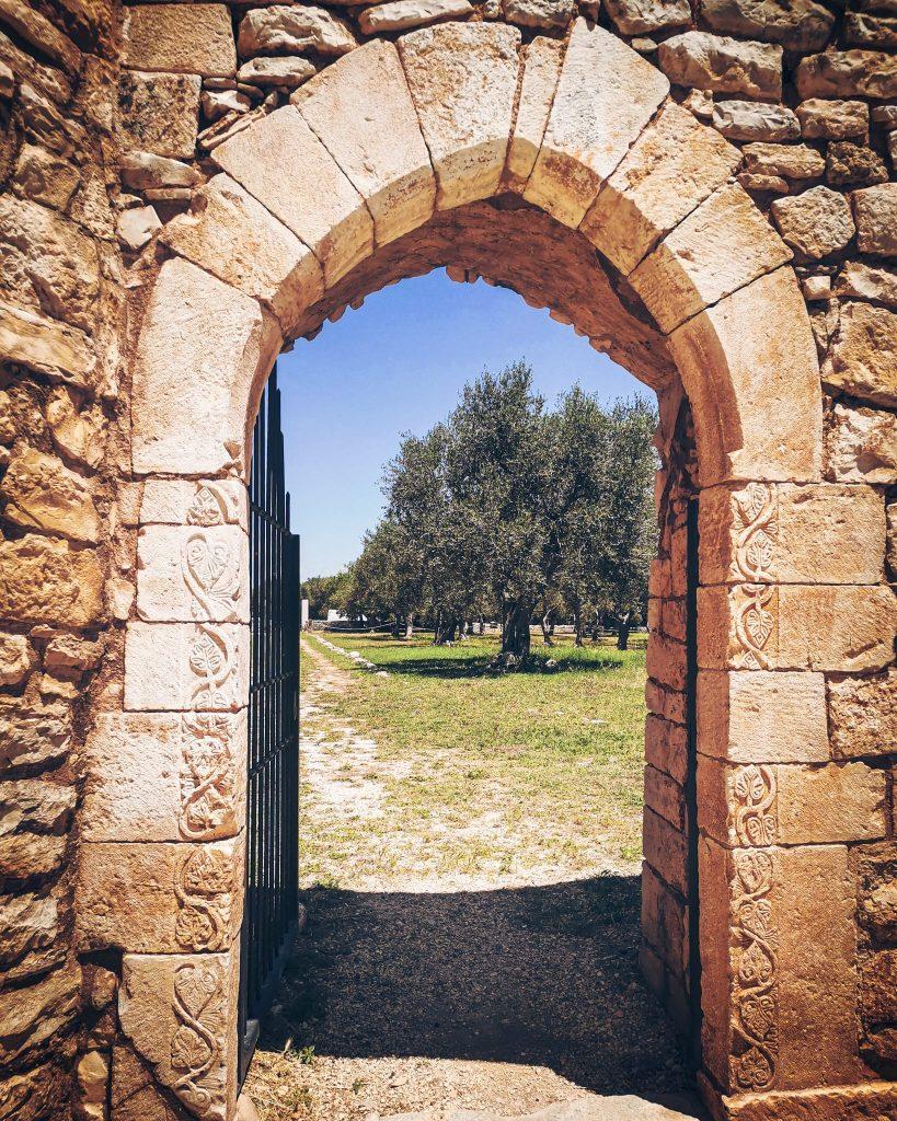 antico portale di Balsignano con fregio su muratura a secco, ulivi oltre la porta