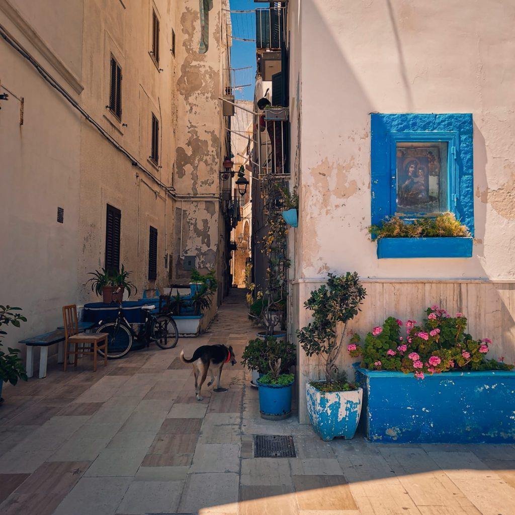 Monopoli, vicolo con edicola votiva e fioriera dipinta di azzurro