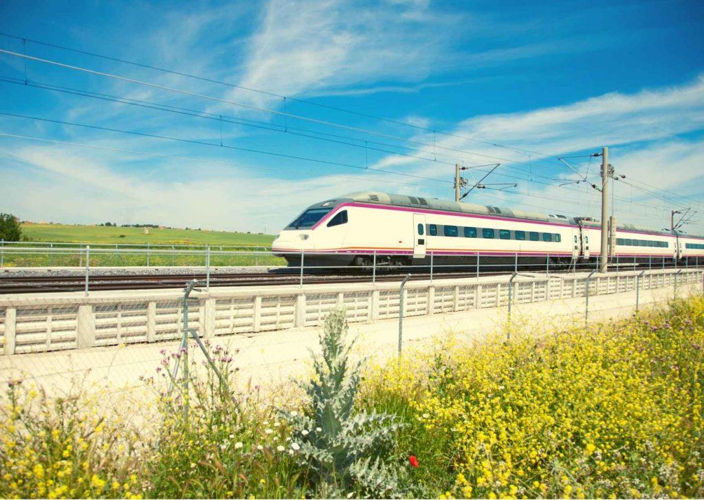 Treno che sfreccia in un paesaggio verde con vegetazione spontanea