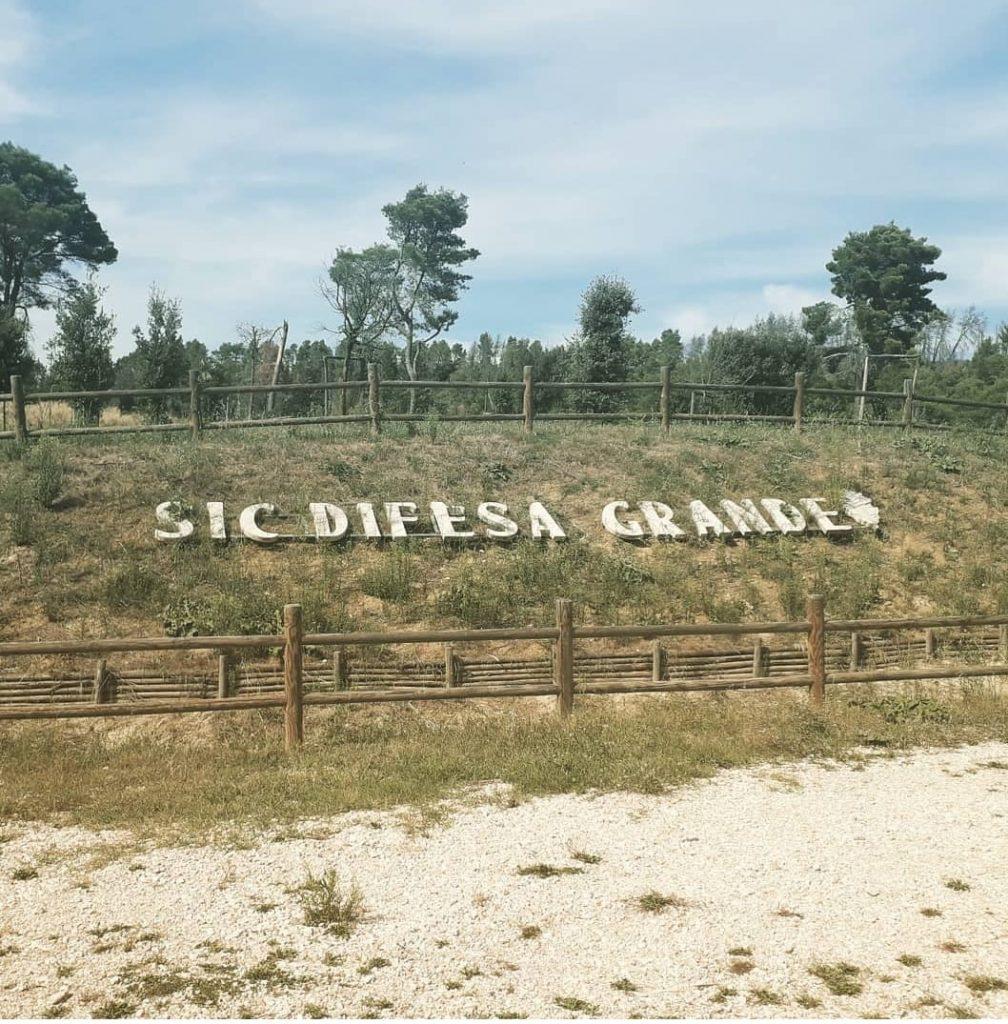 Bosco Difesa Grande: la scritta che si trova all'ingresso dietro un recinto