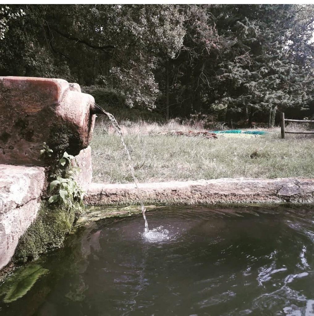 fontanella con sorgente naturale