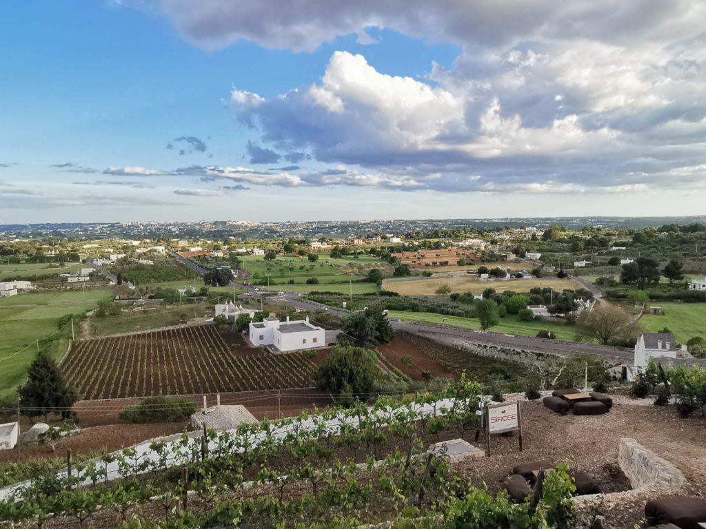 panorama della Valle d'Itria: campi, orti, vigne, case bianche di campagna, trulli